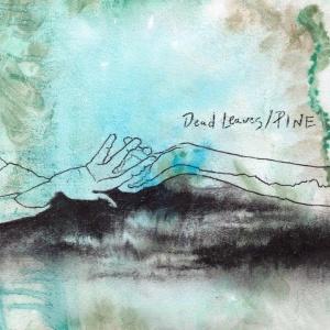 deadleaves-pine